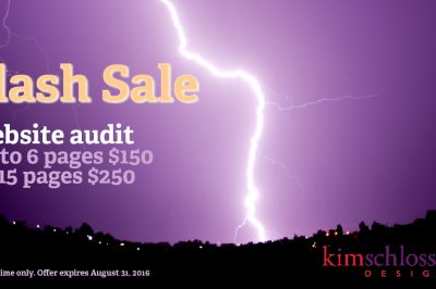 Flash Sale - Website Audit