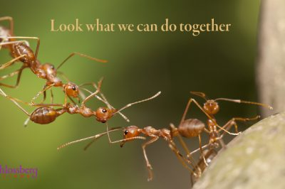 Look what we can do together by Kim Schlossberg Designs