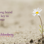 A strong brand is the key to resilience by Kim Schlossberg Designs